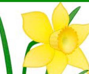 legacy-flower