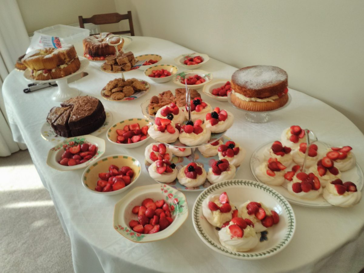 Photos from Summer Strawberries Fundraisers for Central Asia